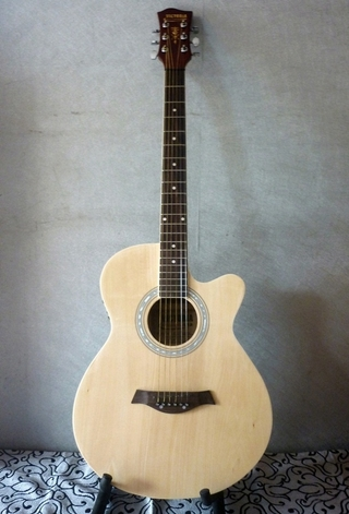 Đàn Guitar Acoustic - 405 EQ
