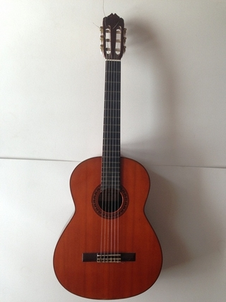 Đàn guitar cũ Grand Shinano GS100